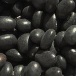 haricot noir