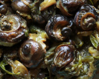Escargots du jardin en sauce